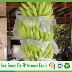 china manufacture banana protect bag