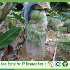 nonwoven fruit bags