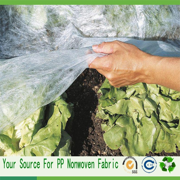 agriculture non woven